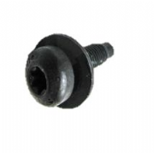 LR084136 Torx Screw M10 x 31mm